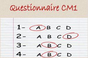 image-questionnaire-cm1